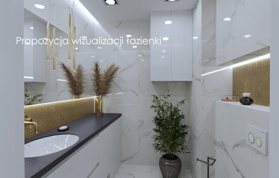 Propozycja wizualizacji łazienki 1